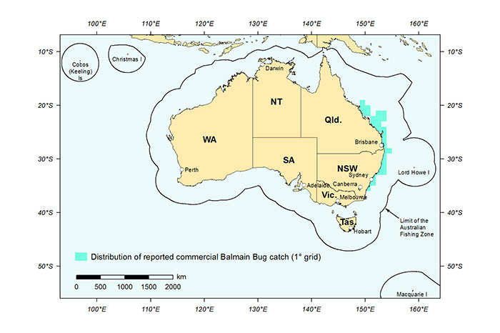 Figure 1: Distribution of reported commercial catch of Balmain Bugs in Australian waters, 2013 (calendar year)