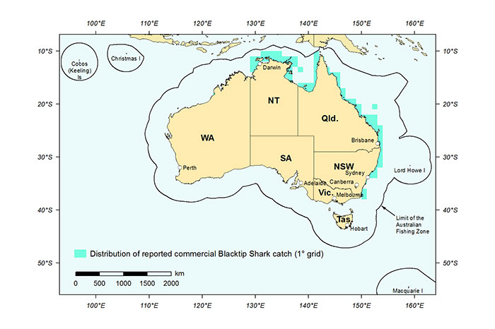 Figure 1: Distribution of reported commercial catch of Blacktip Sharks in Australian waters, 2013 (calendar year)